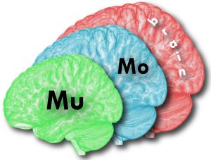 MuMo_logo-01